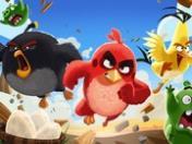 Angry Birds oyunu