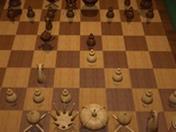 Satranç Ustası