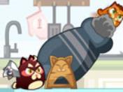 Kızgın Kediler oyunu